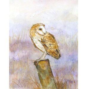 Barn Owl by Kate Wyatt