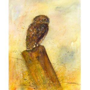 Little Owl by Kate Wyatt