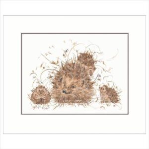 Hedgie-and-Hoglets-by-A-Snowdon